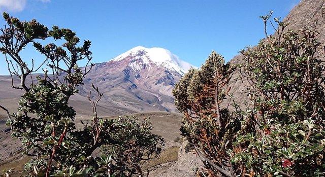 Las montañas explican por qué la Tierra es tan diversa biológicamente