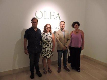 La cultura del olivar llega a la Casa de la Provincia con la muestra Olea de Alcalá y Osuna