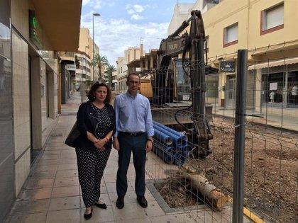 """Cs alerta de la """"tala indiscriminada"""" de árboles en el centro de El Ejido (Almería)"""