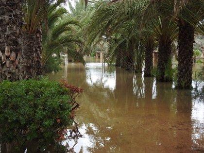 Elche evalúa los daños tras las lluvias, que han afectado especialmente al litoral y a colegios con barracones