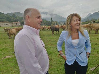 Gázquez (PP) propone ventajas fiscales para fijar población en áreas rurales