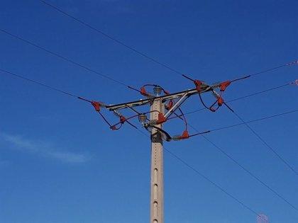 Endesa instala dispositivos para proteger la avifauna en La Ribera d'Ebre (Tarragona)