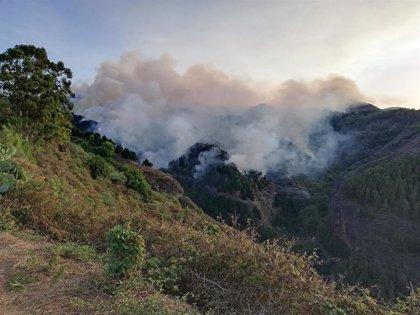 Tragsa sanciona a un representante de las BRIF por hacer declaraciones a medios en la extinción del incendio en Canarias