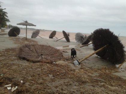 ANSE pide reconvertir agricultura intensiva y urbanismo alrededor del Mar Menor