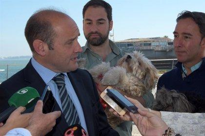 El PP de Cádiz pedirá en Pleno la reducción del 20% del Impuesto de Circulación para 2020