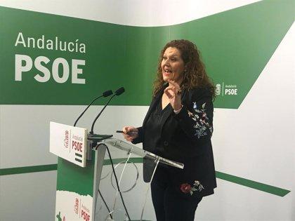 """PSOE de Cádiz pedirá en ayuntamientos la retirada de la campaña de la Junta de violencia de género porque la """"banaliza"""""""