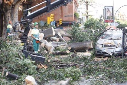 Los geólogos piden un observatorio que evalúe si los municipios cumplen su obligación de prevenir inundaciones