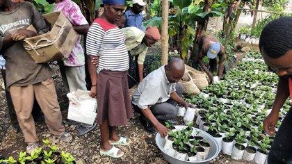España participa en el seguimiento del Proyecto de restauración de ecosistemas forestales en Haití