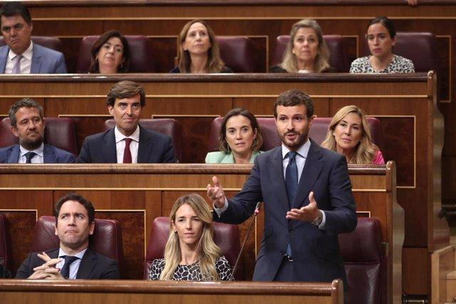 El presidente del PP, Pablo Casado, realiza sus preguntas al presidente del Gobierno en funciones, Pedro Sánchez, durante la sesión de control al Gobierno en funciones, en Madrid (España) a 11 de septiembre de 2019.