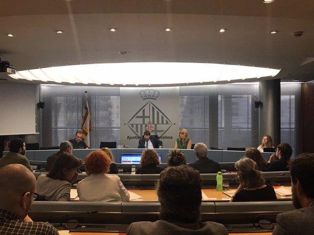 Comissió de la Presidncia, Drets de Ciutadania, Seguretat i Prevenció