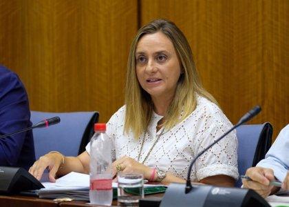 """Fomento no renuncia a estudiar la conexión Cádiz-Huelva con la protección de Doñana """"por encima de todo"""""""