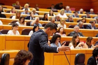El Senado pagó más de un millón de euros por los viajes de los senadores en el último trimestre de 2018