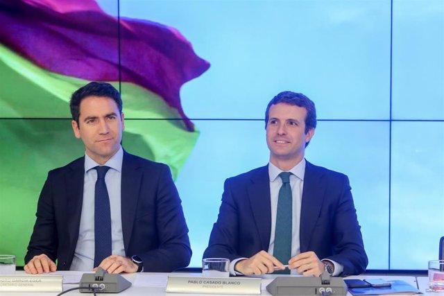 El secretario general del PP, Teodoro Garíca Egea, y  el presidente del partido, Pablo Casado, durante la reunión del Comité Ejecutivo del Partido Popular.