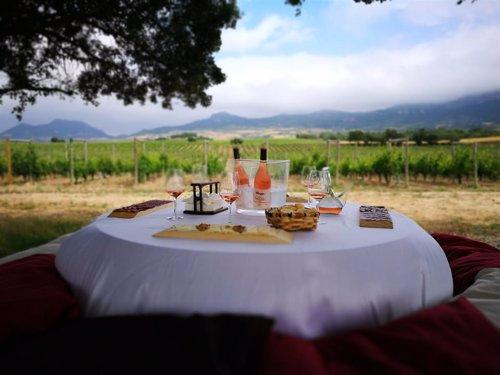 Imagen de los viñedos y vinos de Bodegas Muga
