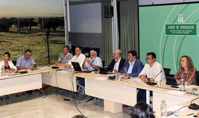 El secretario general de Agricultura, Ganadería y Alimentación, Vicente Pérez, junto con representantes del sector del olivar de Andalucía