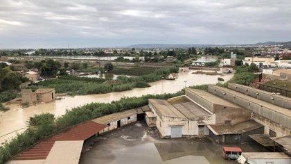 Puig valora la declaración de zona catastrófica de la Vega Baja y los municipios afectados por las lluvias