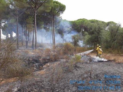 Extinguido el incendio forestal declarado en Almonte (Huelva)