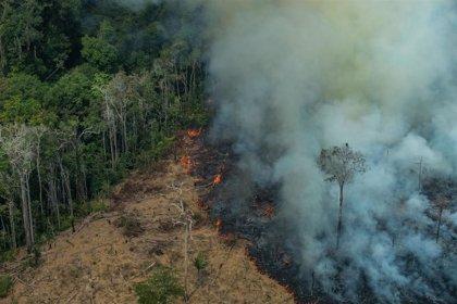 Brasil.- Brasil prorroga la presencia de las Fuerzas Armadas en la Amazonía para luchar contra los incendios
