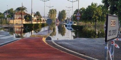 """Sanidad no detecta """"incrementos significativos de patologías"""" derivadas del agua estancada por las lluvias en Dolores"""