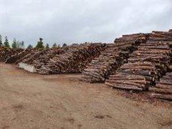 El consum de biomassa es quintuplica a les comarques de Girona els darrers anys per la volatilitat del preu del petroli (ACN)