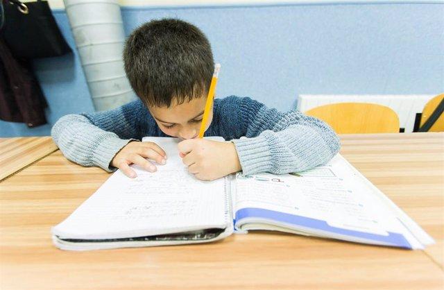 Alumno, libro de texto, estudiar, clase, aula, vuelta al cole, colegio, primaria, educación, deberes
