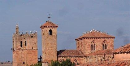 Decenas de cigüeñas hacen escalada en la catedral de Sigüenza en su periplo migratorio a África