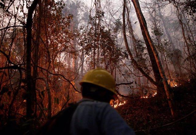 Un bombero voluntario en los incendios de Concepción, Bolivia