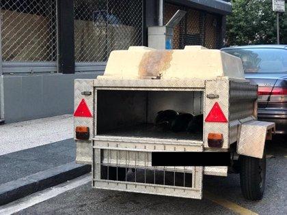 Investigan a un hombre en Vitoria por mover 1.000 kilos de pescado en un transporte para perros y sin refrigerar