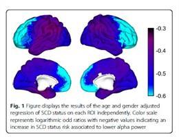 Figura ilustrando los resultados del análisis de regresión de las áreas cerebrales sobre el estatus cognitivo (DCS vs control). Cuanto más azul, más alto el riesgo asociado con una baja potencia en la onda alfa con el deterioro cognitivo subjetivo.