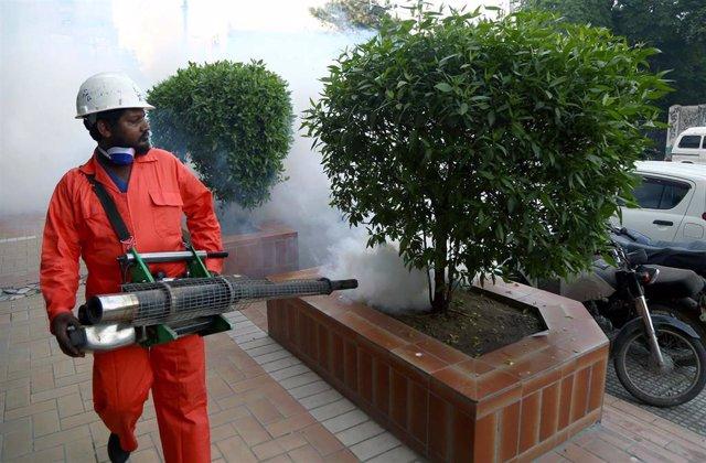 Campaña de fumigación en Pakistán contra los mosquitos transmisores del dengue
