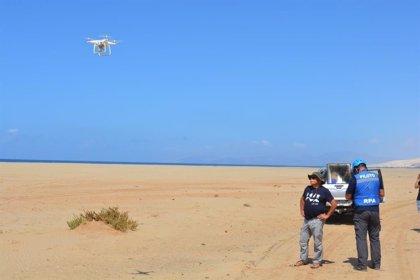 El proyecto 'CanBIO', cofinanciado por Loro Parque y el Gobierno de Canarias, avanza en Fuerteventura