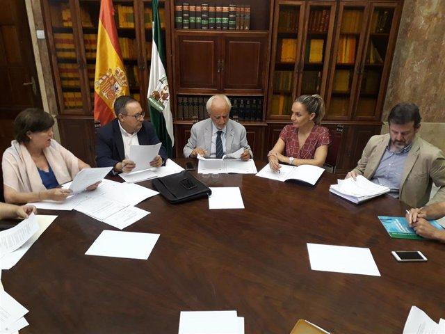 El subdelegado de Gobierno en Almería, Manuel de la Fuente, en la comisión del PFEA
