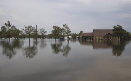 Un informe de la ONU sobre océanos alerta de que el nivel del mar subirá entre 43 y 84 centímetros hasta 2100