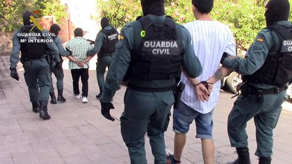 Dos detenidos e incautadas 4.638 plantas de marihuana en un chalet de una urbanización de Toledo