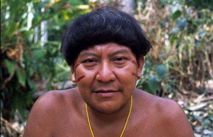 El 'Dalái Lama de la Selva', Davi Kopenawa, gana el 'Premio Nobel Alternativo' por su defensa del Amazonas