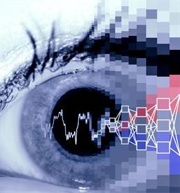 Michela Fagiolini, PhD, y sus colegas demuestran un algoritmo de aprendizaje automático que puede detectar anomalías en la dilatación de la pupila que predicen el trastorno del espectro autista (TEA) en modelos de ratón. El mismo algoritmo, que utiliza la
