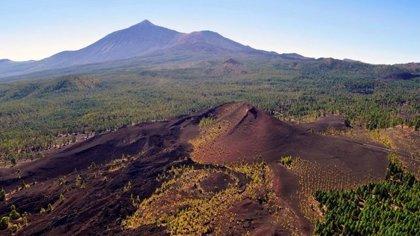 Garachico (Tenerife) reúne a medio centenar de vulcanólogos en un congreso internacional