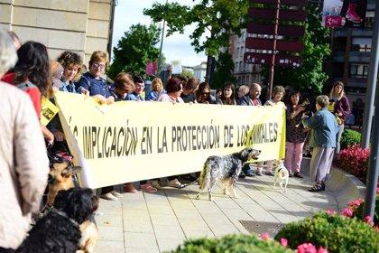 """Concentración en Logroño para exigir """"una mayor implicación en la protección de los animales"""""""