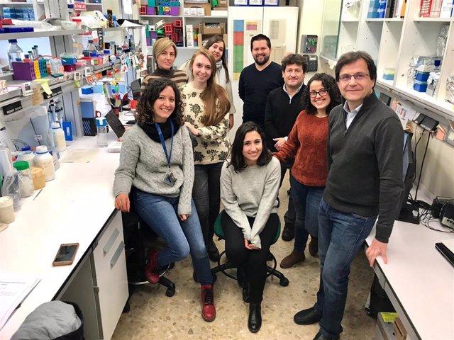 Investigadoras E Investigadores Que Integran El Grupo De Genómica Translacional.