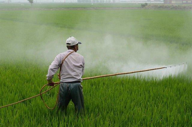 Trabajador usando pesticidas.