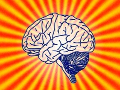 ¿Cómo se puede mantener el cerebro sano?
