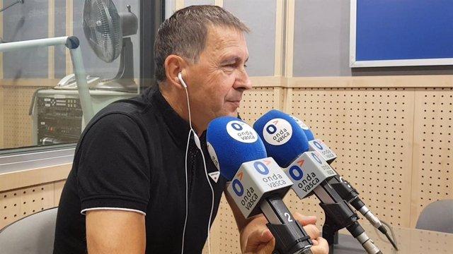 Arnaldo Otegi, coordinador general d'EH Bildu