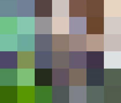 El número de píxeles de estas 22 fotografías representa la cantidad de especies que están vivas actualmente