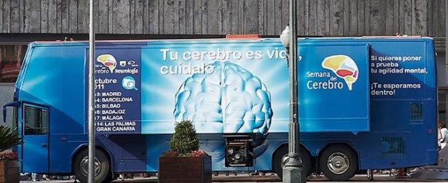 Autobús del cerebro
