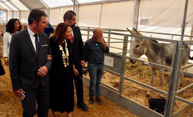 Huelva.- Crespo respalda al sector en su visita a la muestra ganadera de la Feri