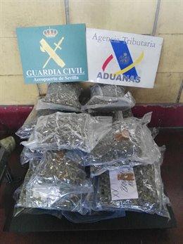 Droga Incautada en el aeropuerto de Sevilla