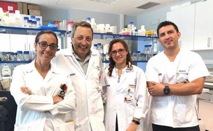 Investigadores trabajan en el desarrollo de nuevos compuestos biocidas contra infecciones hospitalarias