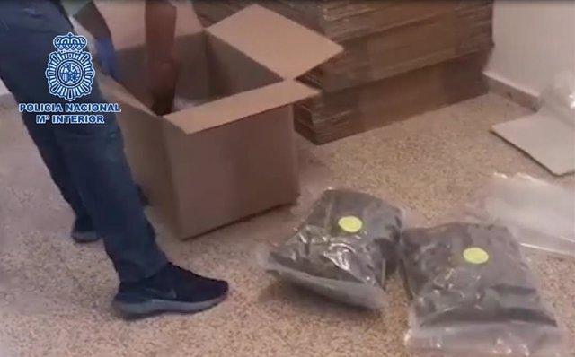 Actuacion contra una red de tráfico de drogas