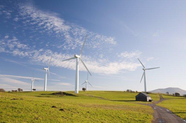 WWF y el Banco de España impulsan un debate sobre fórmulas pioneras para que la banca ayude a la descarbonización