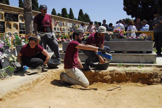 Trabajos de exhumación de la fosa 127 del cementerio de Paterna